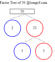 Factor Tree Calculator To Know The Factor Tree Of 50 Its Prime Multiples Lcmgcf Com The number 50 has three factor pairs, which are two numbers that can be multiplied together to these factor pairs are 1 and 50, 2 and 25 and 5 and 10. factor tree of 50 its prime multiples